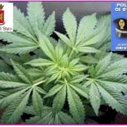 droga a oristano sequestrata da polizia