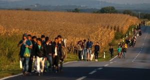 ue sui migranti_il paese di approdo de li deve tenere
