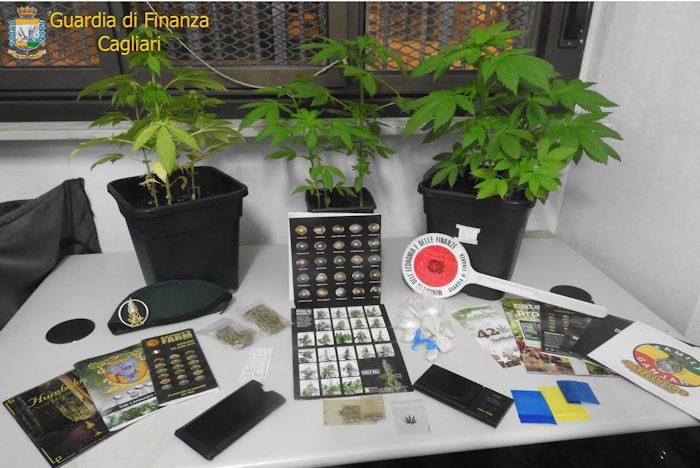 Vasi con piante cannabis sequestrati da gdf cagliari