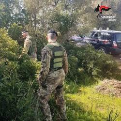reparto squadriglie carabinieri lanusei