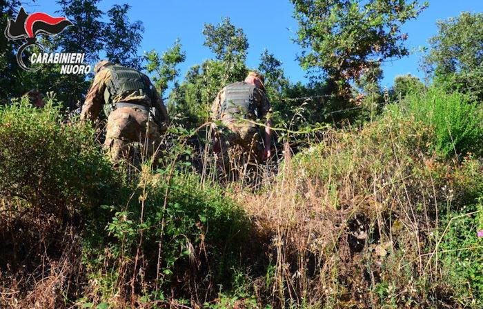 carabinieri alla ricerca di 5 escursionisti dispesi sulle montagne di Lula