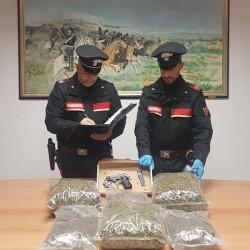 Cinque chili di Marijuana abbandonati nelle campagne di Olbia