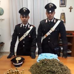 Marijuana comp carbonia cc